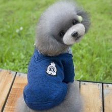 Warm Stylish Sweater for small dogs