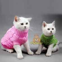 NEW Cozy Kitten Sweaters For Winter