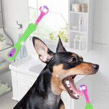 Pet Cleaning Toothbrush